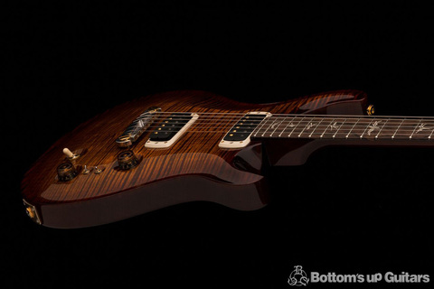 Experience-PRS-2018-Pauls-Guitar-Black-Gold_a_preview.jpg