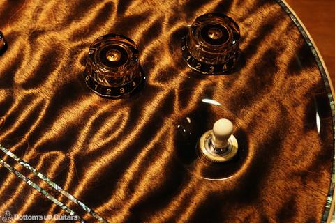 PRS_PS7304_SantanaII_Bronze_ctrl.jpg