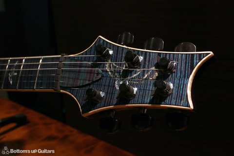 PRS_PS7306_Studio_NL_c_head2.jpg