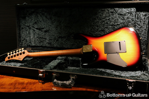 TsGuitars_DST_Custom_NAT_backall.jpg