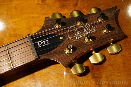 P22APG_BZF_FBJ_Head.jpg