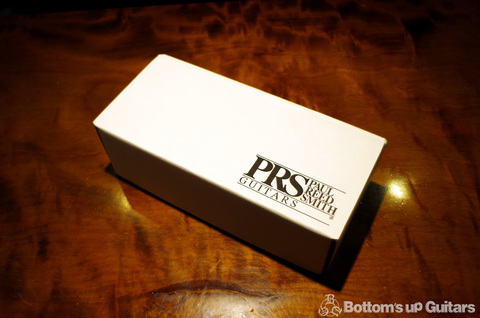 PRS_BrassInsertBridge1.jpg