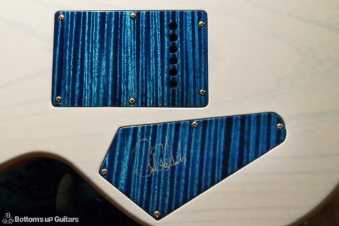PRS_PS2444_HowardLeese_Aq_whtBack_backplate.jpg