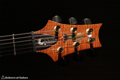 PRS_PS3637_Studio_SSH_TE_head1.jpg