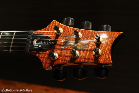 PRS_PS3637_Studio_SSH_TE_head2.jpg