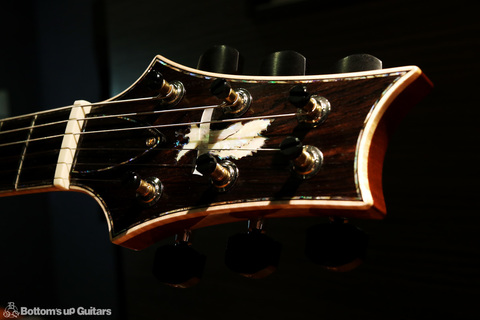 PRS_PS7228_HB2McCarty594LTD_LGS_C_Head2.jpg