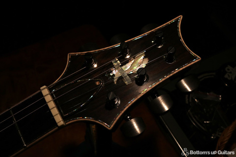 PRS_PS7228_HB2McCarty594LTD_LGS_C_Head_dark.jpg