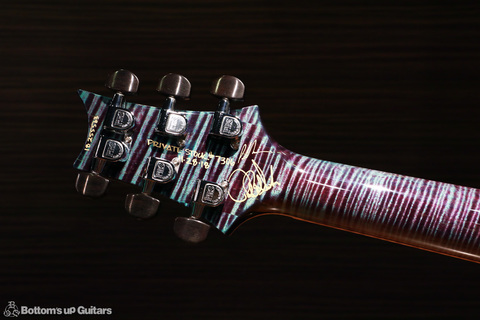 PRS_PS7306_Studio_NL_c_headback.jpg