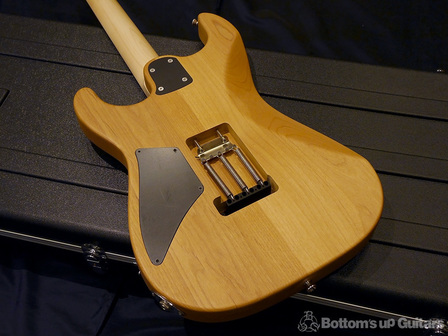 SaitoGuitars_back.jpg