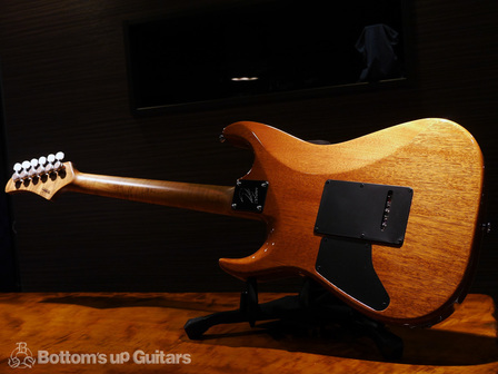 TsGuitars_DST22DX_Roastedmaple_TESB_backall.jpg