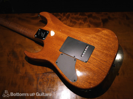 TsGuitars_DST22DX_Roastedmaple_TESB_bodyback.jpg