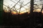 お店から見える元多摩川園の夕焼け