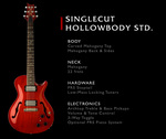 Singlecut Hollowbody Standard