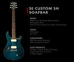 SE Custom Semi-Hollow Soapbar !!